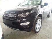 View Land Rover Discovery Sport 2.0 Si4 HSE Luxury 2015
